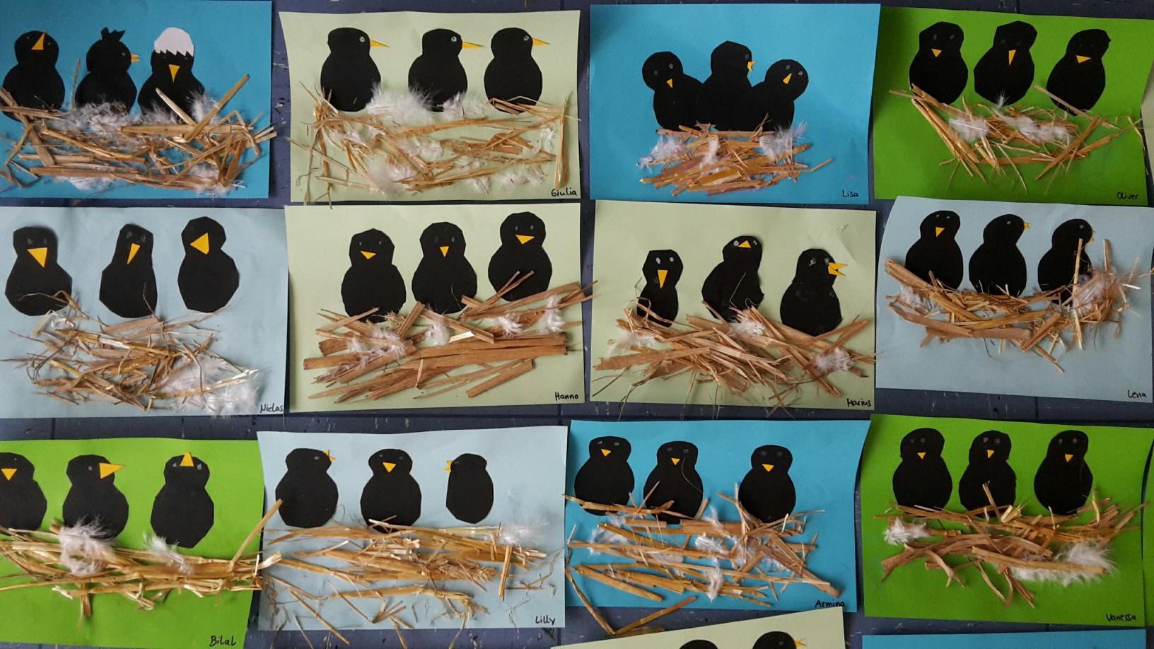 Vogelnester In Der E5 Ggs Paffrathggs Paffrath